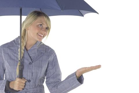 Schirmmodel